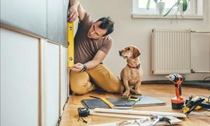 To Improve or Not to Improve: Home Renovations