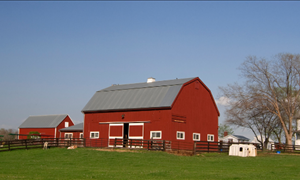 The USDA Does a lot More Than Certify Your Beef – Including Offering Rural Home Loans